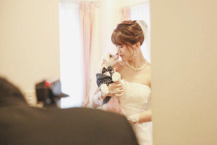 「ぼくのご主人さまの結婚式」